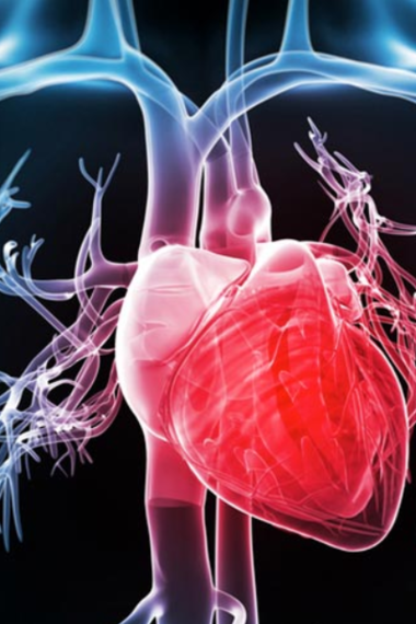 Дела сердечные: как уберечься от сердечно-сосудистых заболеваний